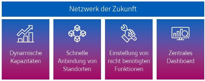 Network as a Service Netzwerk der Zukunft